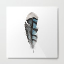 Feather Blue Jay Watercolour Painting Metal Print