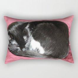 Kitty nap time. Rectangular Pillow