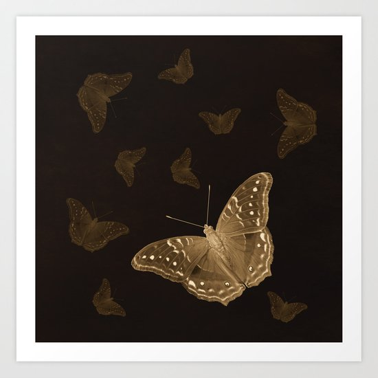 Butterflies in the dark Art Print