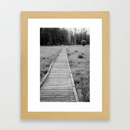 Walkway To The Woods Framed Art Print