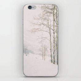 Aspen in snow - Beaver Creek, Colorado iPhone Skin