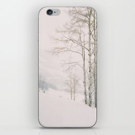Aspen in snow - Beaver Creek, Colorado iPhone Skin