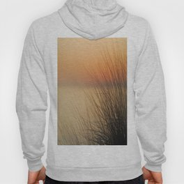 sea ​​urchins Hoody