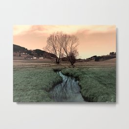 A stream, dry grass, reflections and trees II | waterscape photography Metal Print