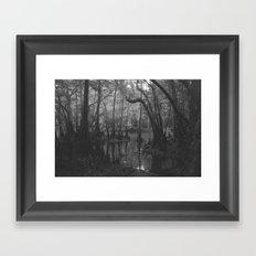Florida Swamp Framed Art Print