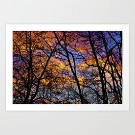 December colours Art Print