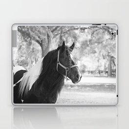Stunning Gypsy Vanner Laptop & iPad Skin