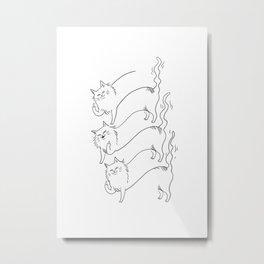 schrödinger's cats Metal Print