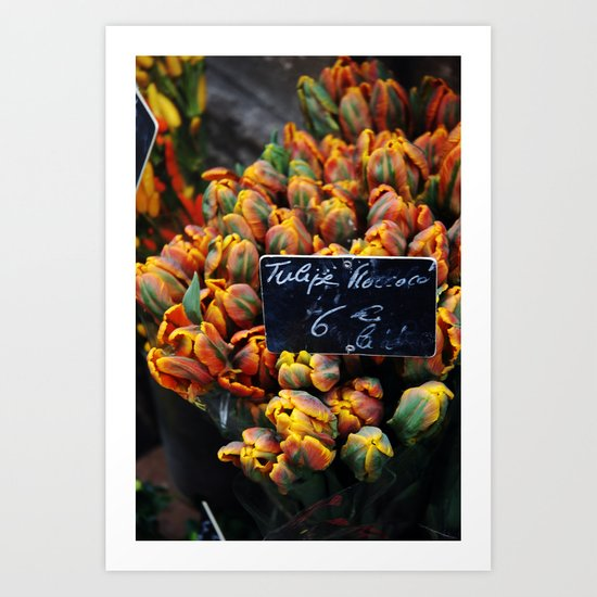 French Blooms Art Print