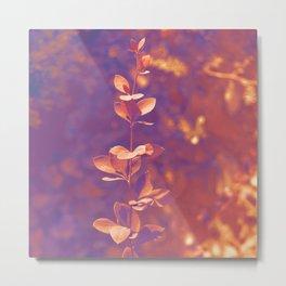 Fairytale garden Metal Print