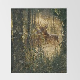 Whitetail Deer - A Golden Moment Throw Blanket