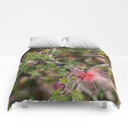Desert Wildflower Bush Comforters