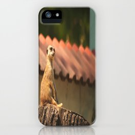 Meerkat Funny Observer #decor #society6 iPhone Case