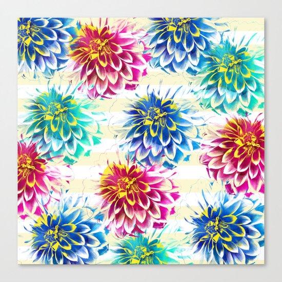 Colorful Dahlias Canvas Print