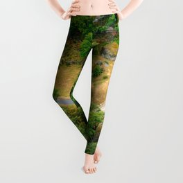 House in the Forest Leggings