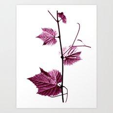 wine leaf abstract I Art Print