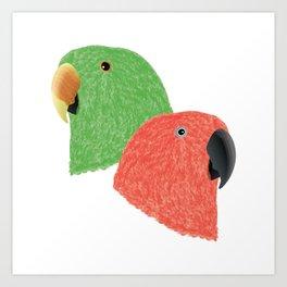 Eclectus Parrots Art Print