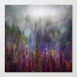 Four Seasons Forest Canvas Print