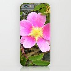 Wild Rose Slim Case iPhone 6s
