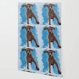 Dancing Dog Wallpaper