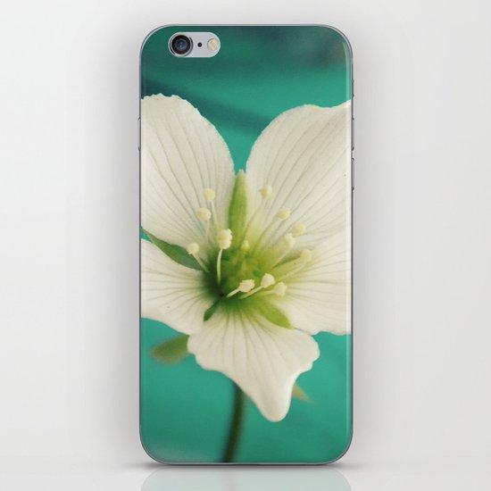 Venus iPhone & iPod Skin