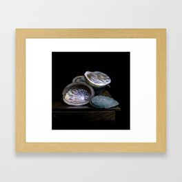 Abolone (for my Grandmothers) (c)Joel Stephen Birnie Framed Art Print
