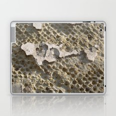 Herculaneum Laptop & iPad Skin
