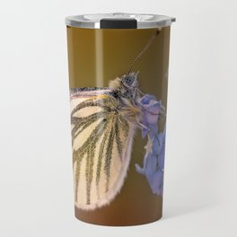 White and cream butterfly on forget-me-not flowers Travel Mug