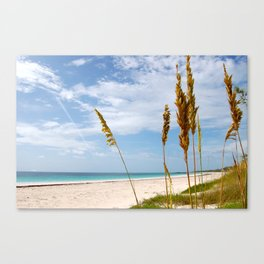Mark Your Piece of Paradise Canvas Print