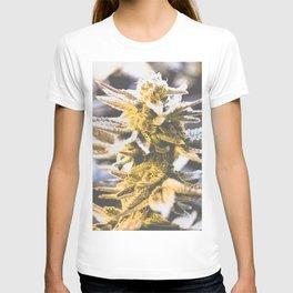 Beautiful Flower T-shirt