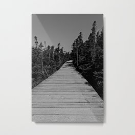 walkway through the trees Metal Print