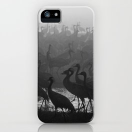 Cranes in the fog iPhone Case
