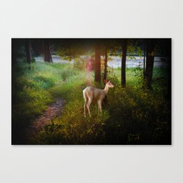 sunset ghost Canvas Print