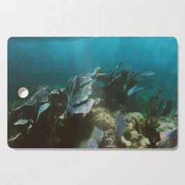 Mexican Caribbean Sealife Cutting Board