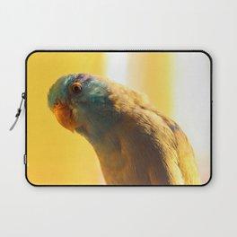 Curious Bird Laptop Sleeve