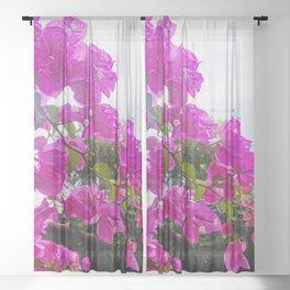 Spirit of summer Sheer Curtain