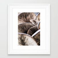mushrooms Framed Art Prints featuring Mushrooms by Kathy Dewar