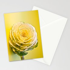 Cabbage Rose  Stationery Cards