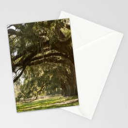Oak And Moss Stationery Cards
