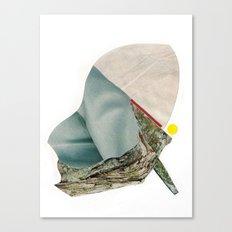 C1 Canvas Print