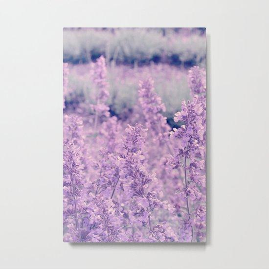Dreamy Lavender Metal Print