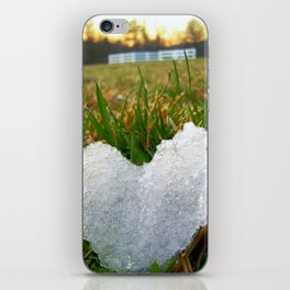 Heart of Ice iPhone Skin