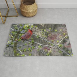 His Majesty the Cardinal Rug