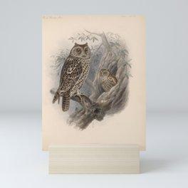 Whiskered Screech Owl4 Mini Art Print