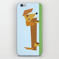 dachshund iPhone & iPod Skins featuring Dachshund by They Come Along