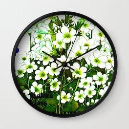 Saxifraga granulata Wall Clock