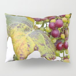 Green and purple grapes on the vine Pillow Sham