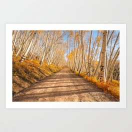 FALL ROAD COLORADO AUTUMN PHOTOGRAPHY Art Print