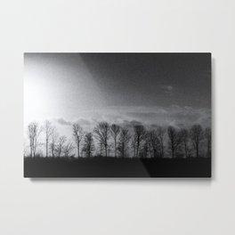 Friesland I Metal Print