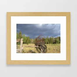 Barbed Wire Up in the White Mountains Arizona Framed Art Print